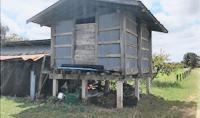 บ้านเดี่ยวหลุดจำนอง ธ.ธนาคารกสิกรไทย บุโพธิ์ ลำปลายมาศ บุรีรัมย์